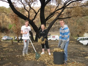 David McKay, Chloe Persello and Ryan McKay of the Marion Stake clear fire-hazardous leaves in the shadow of a burnt tree at a Kersbrook property